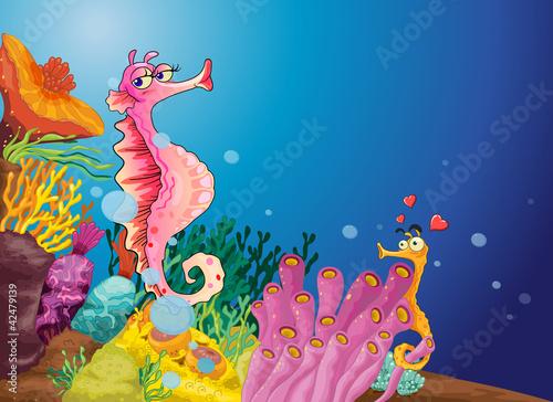 Foto op Plexiglas Onderzeeer Seahorse love