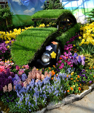 Old Car In Flower Show.