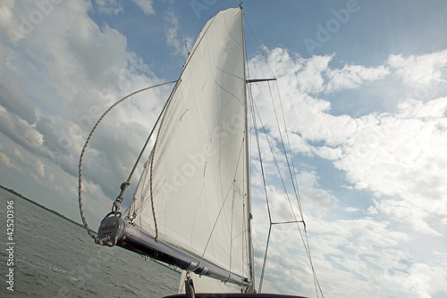 Poster Zeilen Sailing on a lake in spring
