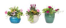 Spring Summer Flower Pots Isol...