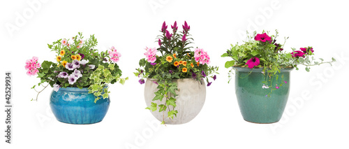 Spring Summer flower pots isolated on white Wallpaper Mural