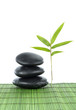 zen stones and a fresh bamboo leaf on green mat