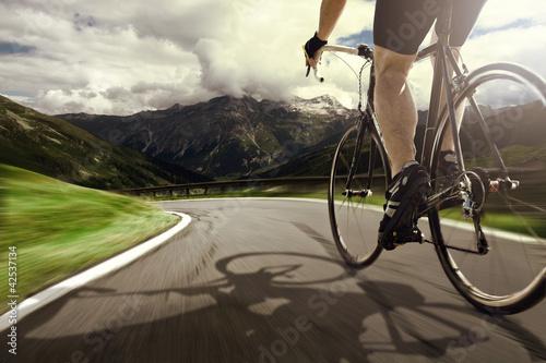 Foto-Stoff bedruckt - Bicycle Tour (von lassedesignen)