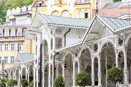 Fotografie, Obraz  Market Colonnade, Karlovy Vary (Carlsbad), Czech Republic