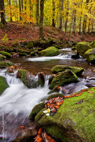 Fototapeten Forest river mountain stream in the Ukrainian Carpathians