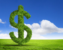 Green Grass  US Dollar Symbol
