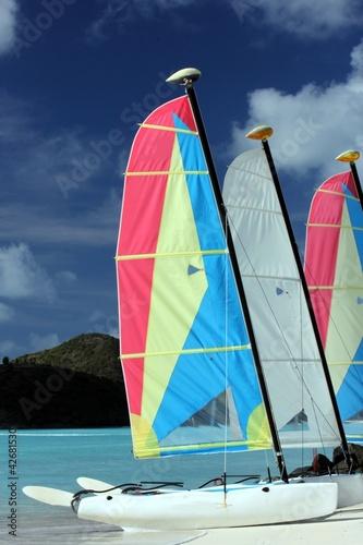 Staande foto Zeilen catamaran sur la plage