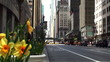 Center of Manhattan. NYC