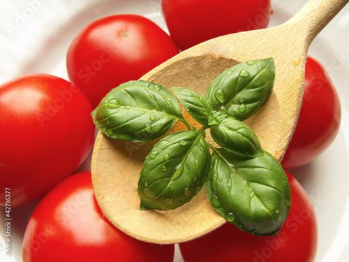 bazylia z kroplami wody na tle pomidorów