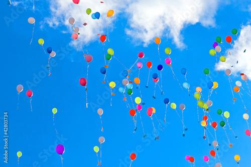 Fotografie, Obraz  Various balloons