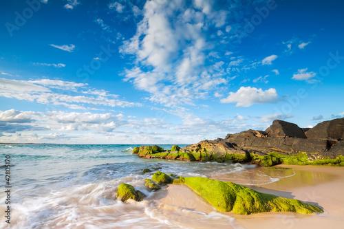 Printed kitchen splashbacks Australia cabarita beach
