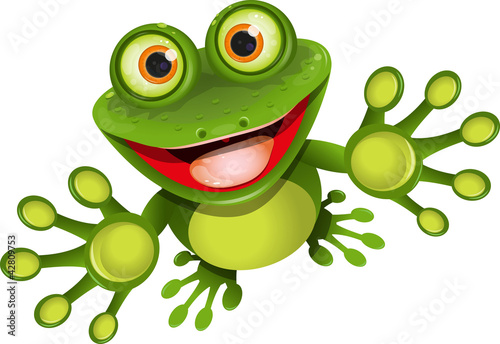 Fotografija happy frog