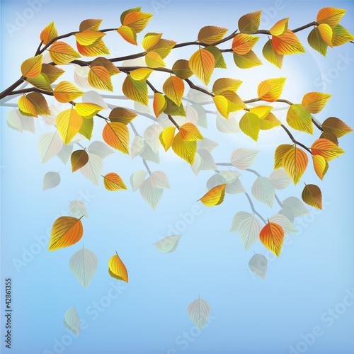 Kolekcje specjalne naklejek jesieni-drzewo-natury-tlo