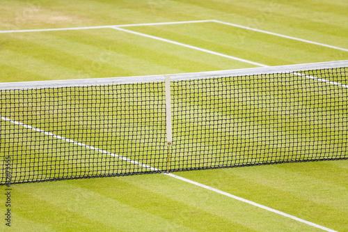 Photo  Grass tennis court