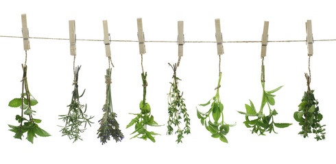 Obraz na Plexi Fresh herbs hanging on a rope