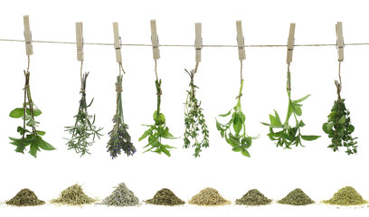 FototapetaFresh herbs hanging on a rope.