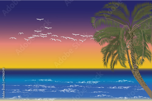 Poster Vogels, bijen palm tree and birds at sea sunset