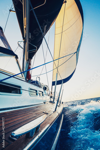Fototapety, obrazy: Sailing