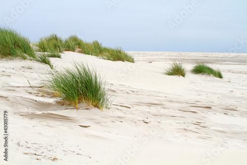 Spoed Foto op Canvas Noordzee Vordünen