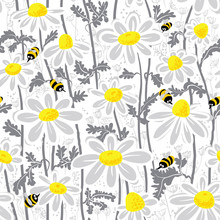 Bees And Chamomile