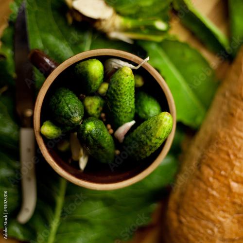 Fototapeta ogórek ogórki zielone kiszenie małosolne chrzan czosnek obraz