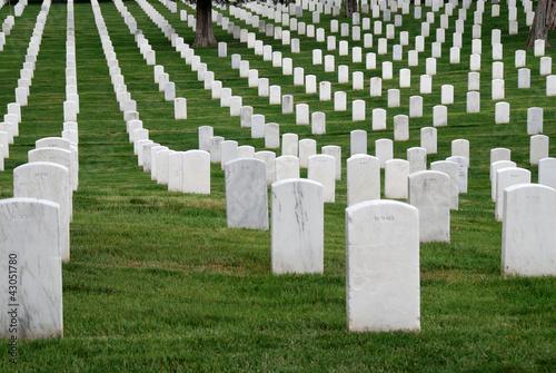 Keuken foto achterwand Begraafplaats Arlington 2