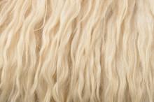 Close Up Sheepskin Texture Bac...