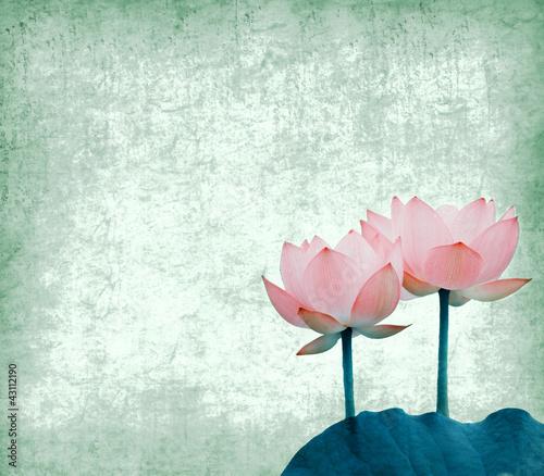 Garden Poster Lotus flower Water Lily on grunge textured background