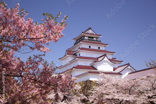 Tuinposter Japan Aizuwakamatsu Castle and cherry blossom