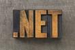 network internet domain