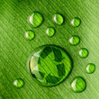 canvas print picture Water drops on leaf and recycle logo