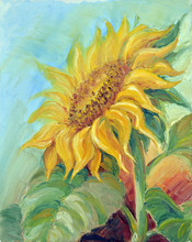 Sunflower,  Oil Painting On Ca...