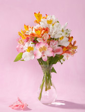 Bouquet Of Alstroemeria On Pink Background