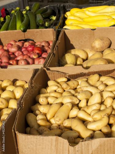 Fotografie, Obraz  Fresh Vegetables