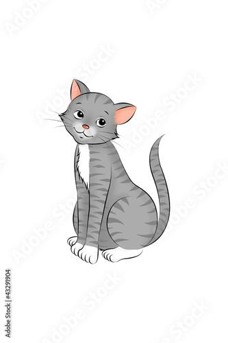 Printed kitchen splashbacks Cats 06 Katze sitzend