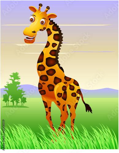 Foto op Aluminium Zoo Giraffe in the jungle