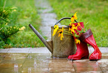 Red Rain Boots, Watering Can A...