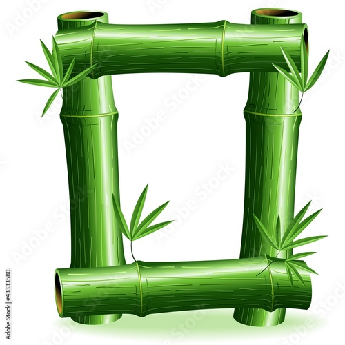 Foto auf AluDibond Ziehen Bambù Lettera O - Bamboo Logo Sign Letter O - Vector