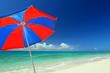 美しいサンゴの海とビーチパラソル