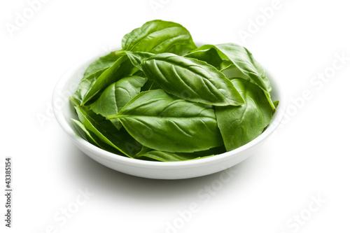 Stampa su Tela fresh basil leaves