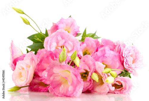Fototapeta bouquet of eustoma flowers, isolated on white obraz na płótnie