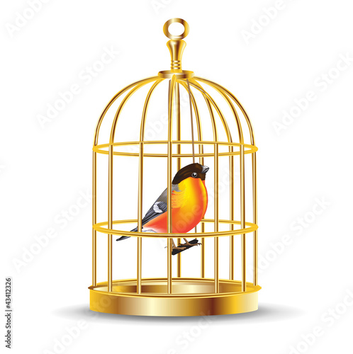 Fotografie, Obraz  golden bird cage with bird inside