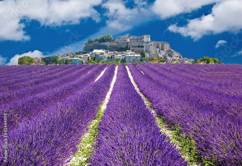 Printed kitchen splashbacks Lavender Lavande en Provence, village provençal en France
