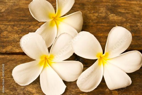 Lan Thom flowers