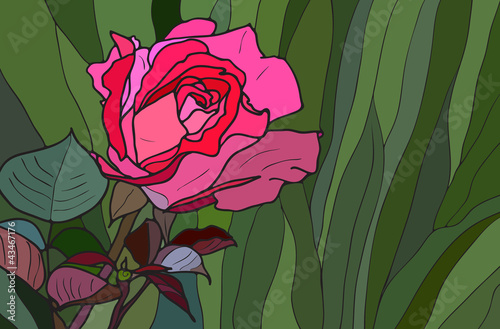Rose stained glass window