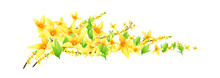 Vector Icon Flower