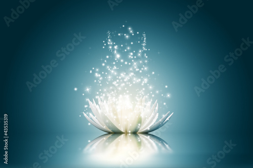 Lotus flower #43535319