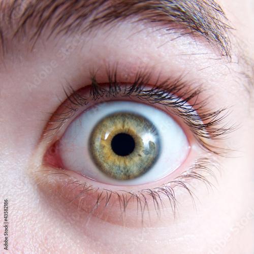 Spoed Foto op Canvas Iris Erschrockener Blick – Auge mit grüner Iris