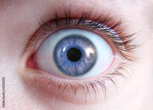 Spoed Foto op Canvas Iris Nahaufnahme Auge mit blauer Iris