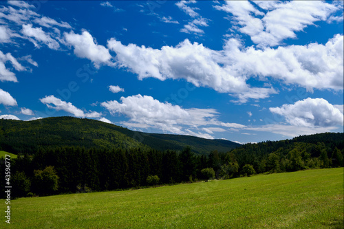 Poster Campagne summer mountains covered with green forests